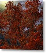 The Passion Of Autumn Metal Print