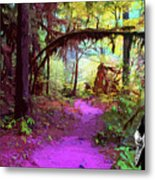 The Path Leads Ahead Metal Print