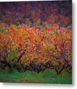 The Peach Orchard Metal Print