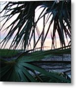 The Peeking Palms Metal Print