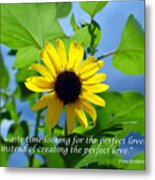 The Perfect Lover  Metal Print