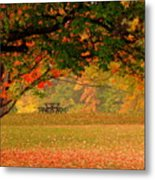 The Perfect Seat  Metal Print