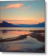 The Pink Clouds Of January Metal Print