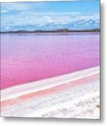 The Pink Diagonal Metal Print