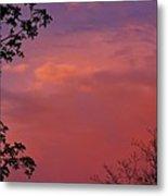 The Pink Sky Metal Print