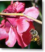 The Pollinator Metal Print