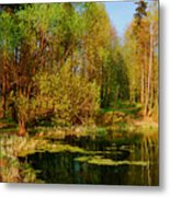 The Pond In The Spring Metal Print