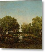 The Pool, Memory Of The Forest Of Chambord Metal Print