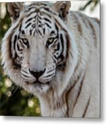 The Power Within Metal Print