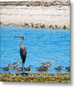 The Procession  Metal Print