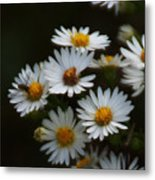 The Promise Of Fall Metal Print