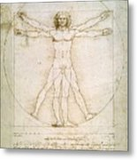 The Proportions Of The Human Figure  Metal Print