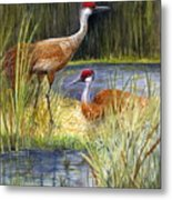 The Protector - Sandhill Cranes Metal Print