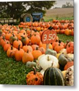 The Pumpkin Farm One Metal Print