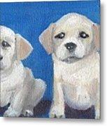The Pups 2 Metal Print