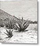 The Pyramid Of The Sun, Teotihuacan Metal Print