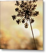The Queen At Sunrise Metal Print