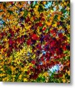 The Rainbow Tree Metal Print