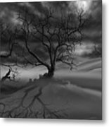 The Raven's Night Metal Print