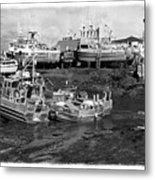 The Real Alaska - Caught At Low Tide Metal Print