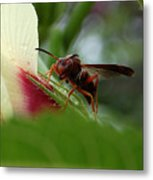 The Real Gardener Metal Print