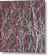 The Red And The Grey Metal Print