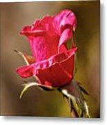 The Red Bud Metal Print