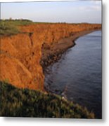 The Red Cliffs Of Prince Edward Island Metal Print