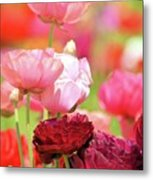 The Red Metal Print