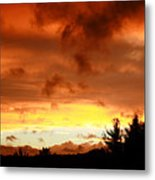 The Red Planet Metal Print