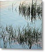 The Reeds Metal Print