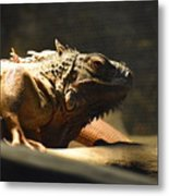 The Reptile World Metal Print