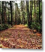 The Richness Of Autumn Treasures Metal Print
