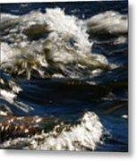 The River Rush Metal Print