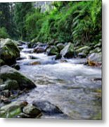 The River Sings Metal Print