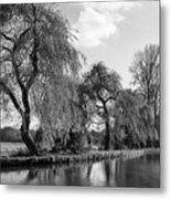 The River Wey,guildford, Surrey,england  Metal Print