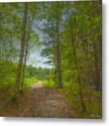 The Road Goes Ever On And On Metal Print