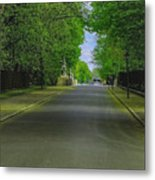 The Road On A Border Of Royal Park Metal Print
