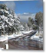 The Road Through Winter Metal Print