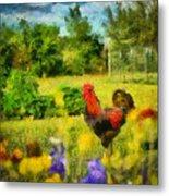The Rooster's Garden Metal Print