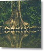 The Roots Metal Print by Amber Dopita