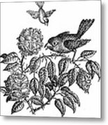 The Roses And The Sparrow Metal Print