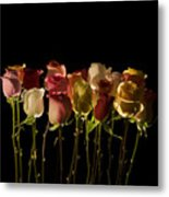 The Rose's Forest Metal Print