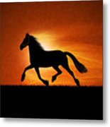 The Running Horse Background Metal Print