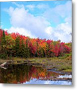 The Scarlet Reds Of Autumn Metal Print