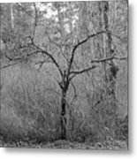 The Scary Little Tree Metal Print