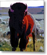 The Shamans Buffalo Metal Print