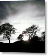The Shine  Metal Print