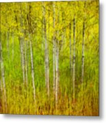 The Small Forest Metal Print