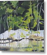 The Snow By The Pond Metal Print